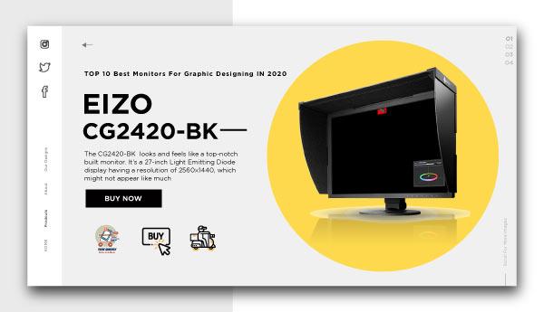 monitors for graphic designing -EIZO CG2420-BK